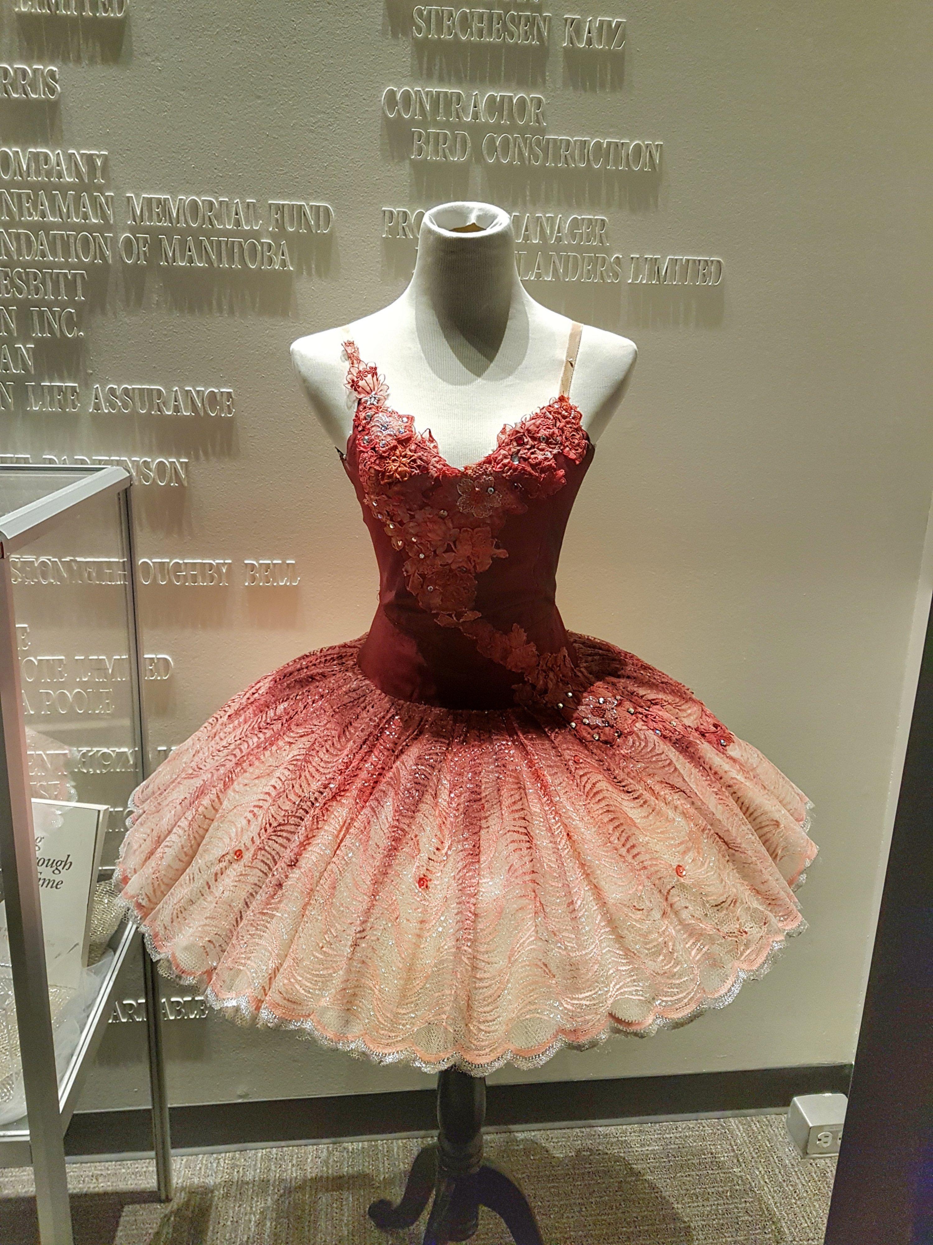 Sleeping Beauty Ballet Tutu
